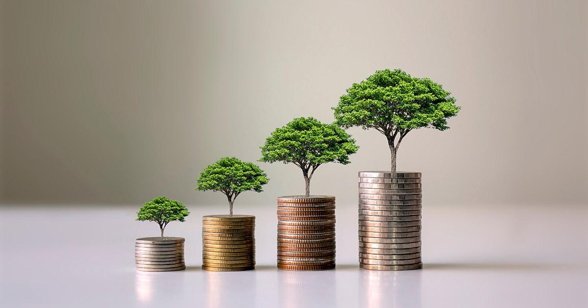 8 validi motivi per investire in Trentino