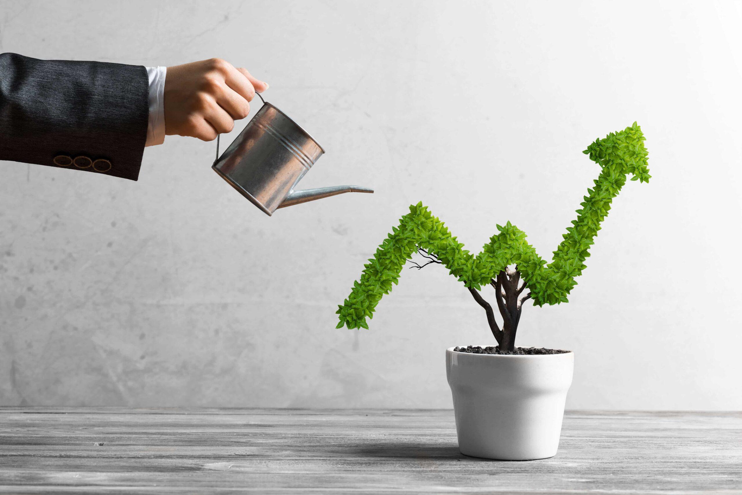 Attrarre investitori per la tua startup: i consigli dell'esperto